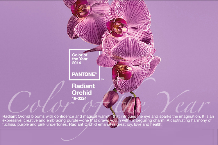 Radiant_Orchid_2014_Color_of_the_year