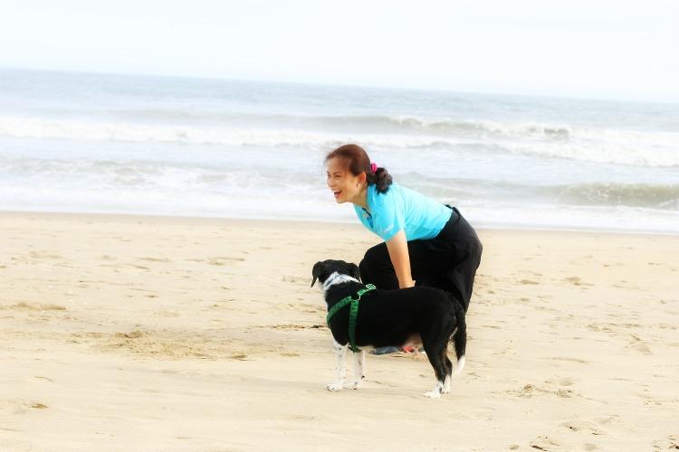 photography, beach