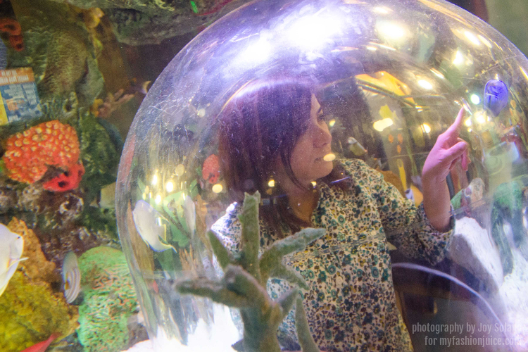 Grapevine Sea Life Aquarium